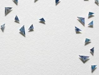 detail shot of Broken Petals